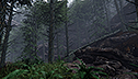 <br><br>Tom Ivens: <br>Forest Environment <br> in Cry Engine 3